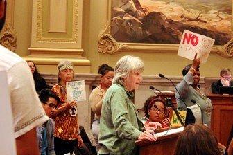 Representative Karen Clark spoke in opposition to the water yard. Photo by Kayla Steinberg