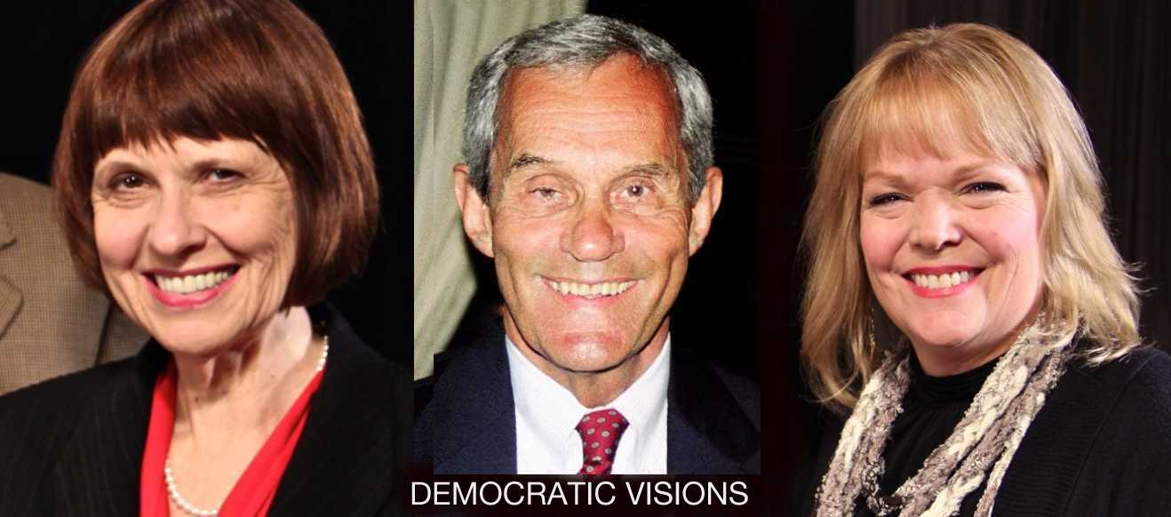 Representatives Yvonne Selcer and Ron Erhardt and community organizer Joan Howe-Pullis face stiff right wing opponents in the trending-blue southwest suburbs.