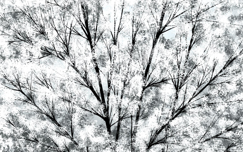 justin-strom-snowfall