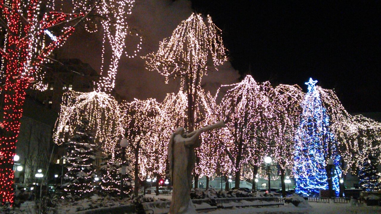 holiday light displays brighten twin cities and beyond twin cities daily planet - Christmas Lights Minneapolis